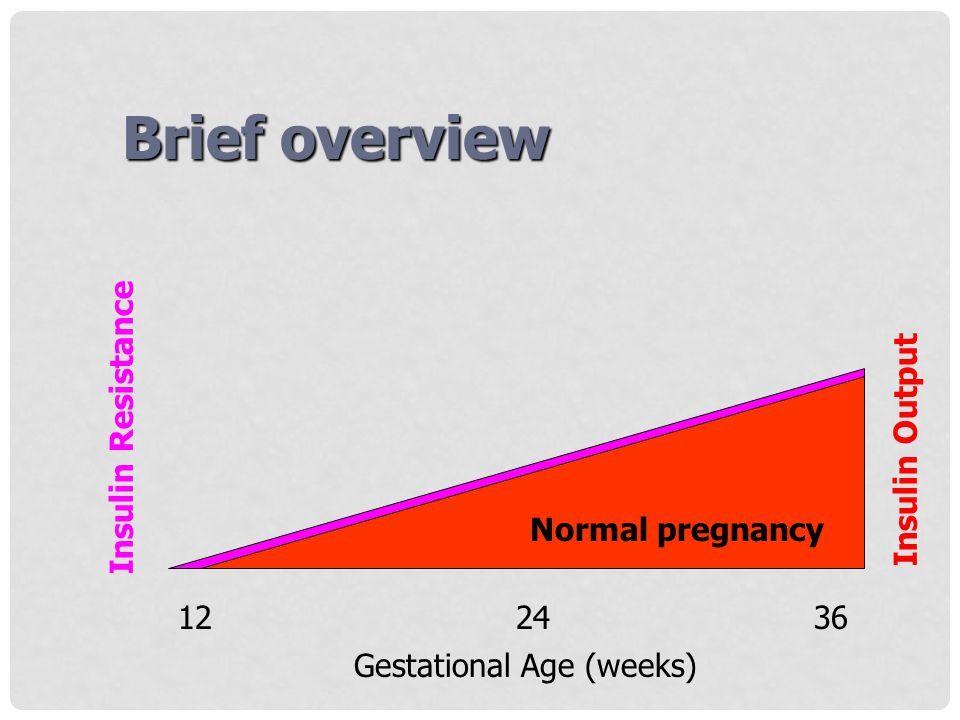 Brief overview Insulin Resistance Insulin Output Normal pregnancy