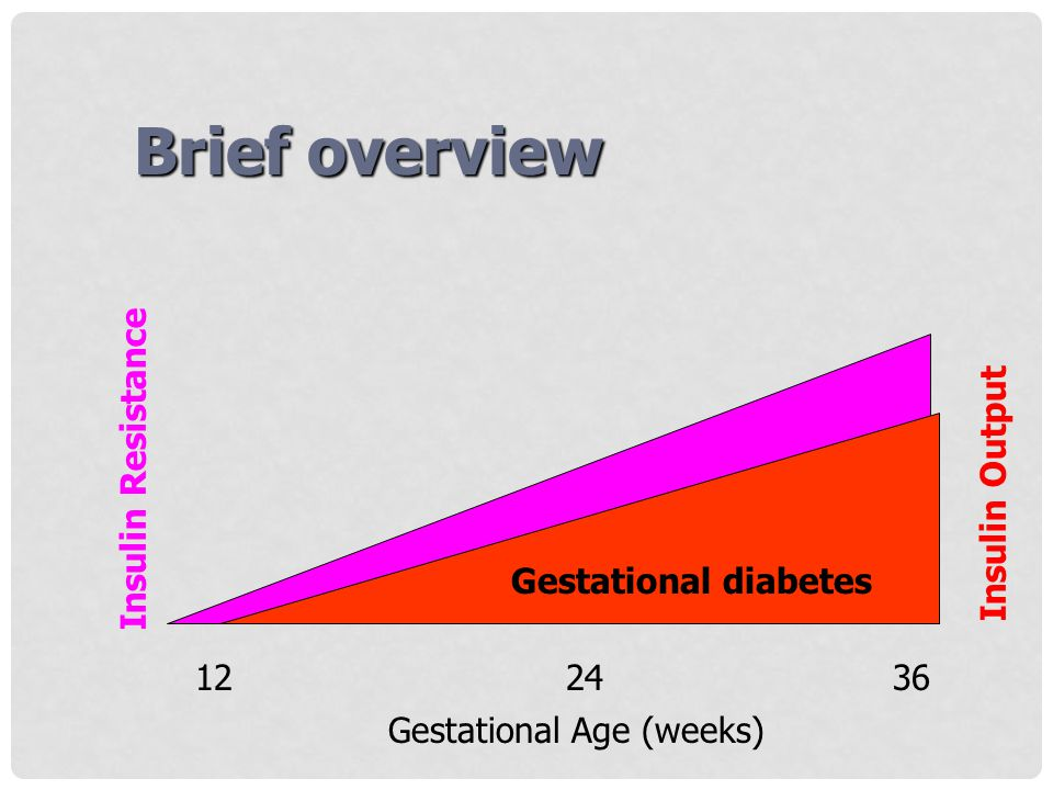 Brief overview Insulin Resistance Insulin Output Gestational diabetes
