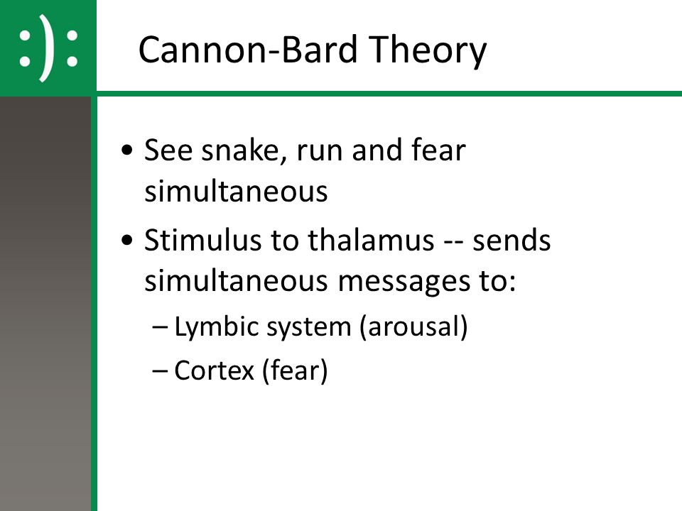 which is the best explanation of the cannon bard theory