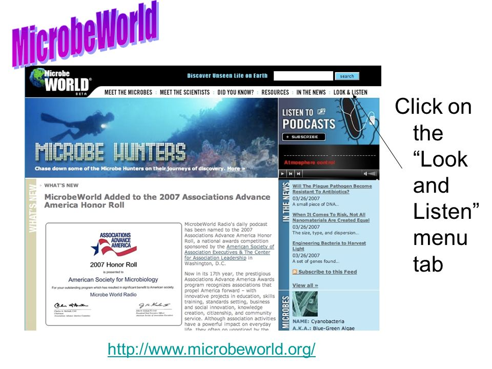 MicrobeWorld Click on the Look and Listen menu tab