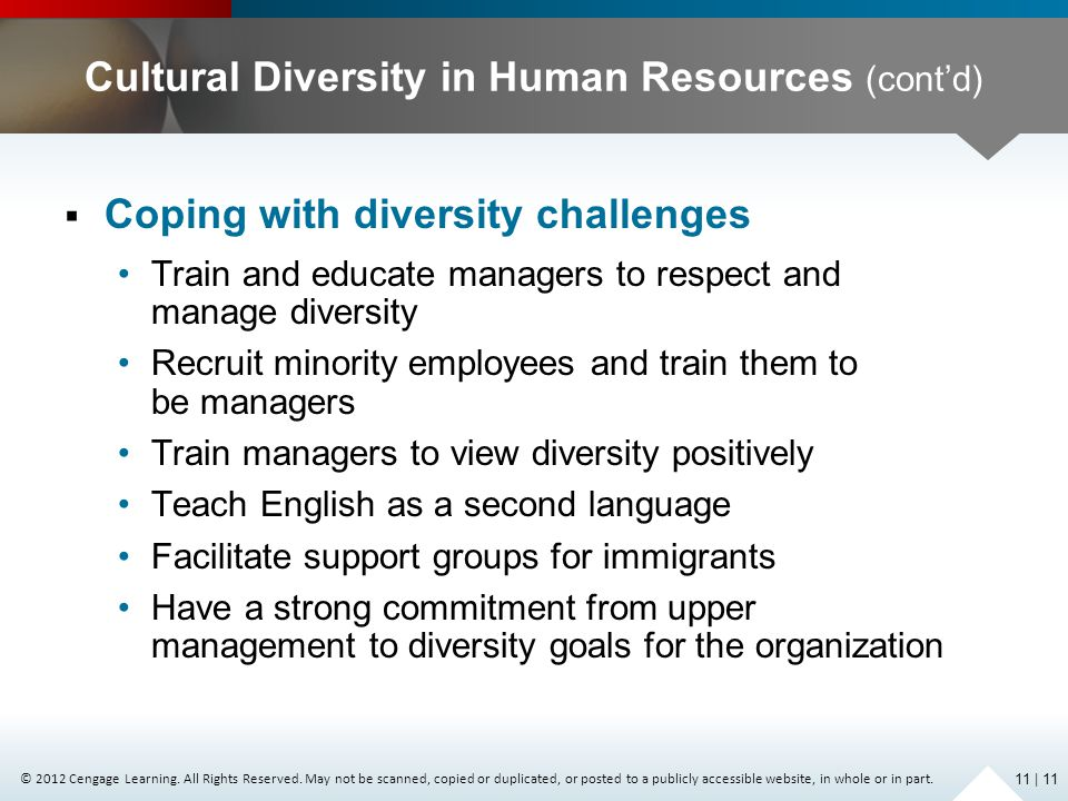 Cultural Diversity in Human Resources (cont'd)