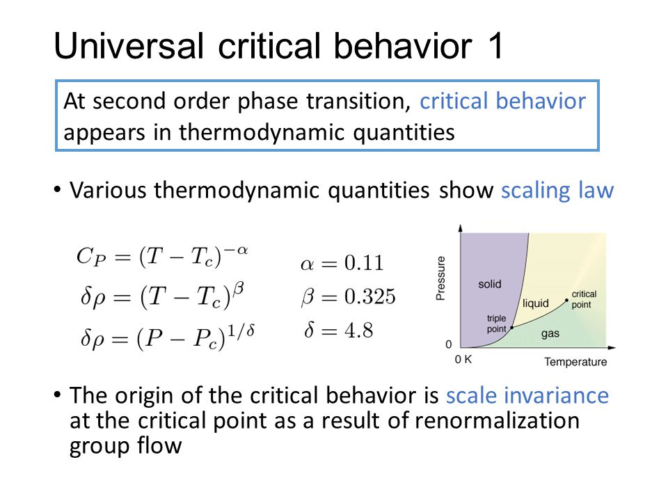 Universal critical behavior 1