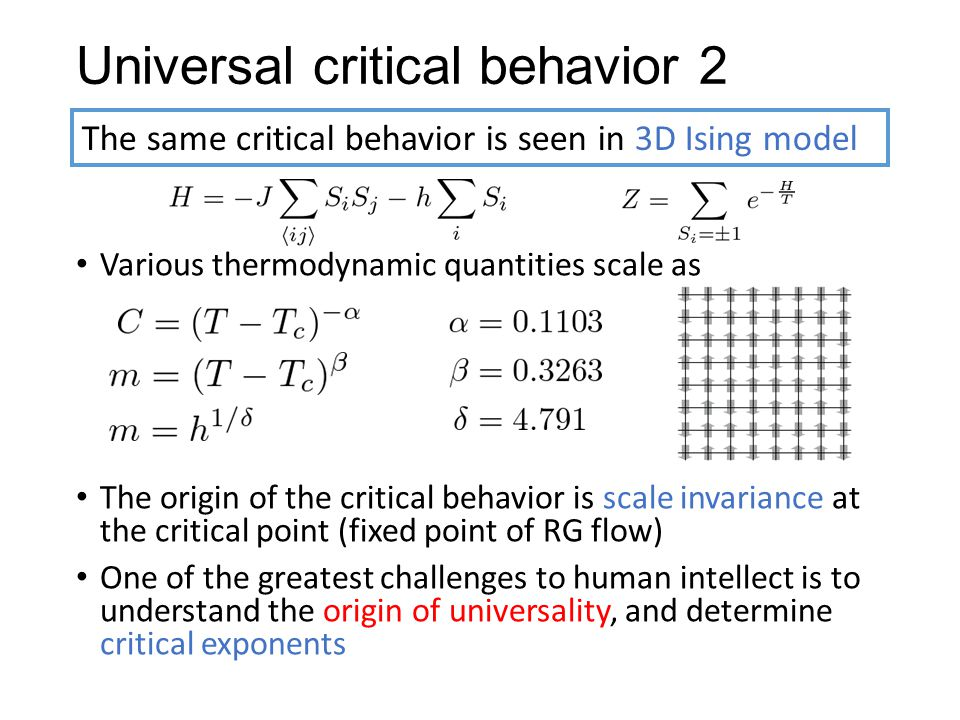Universal critical behavior 2