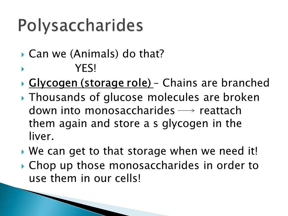 Polysaccharides Can we (Animals) do that YES!