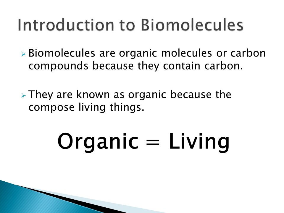 Introduction to Biomolecules