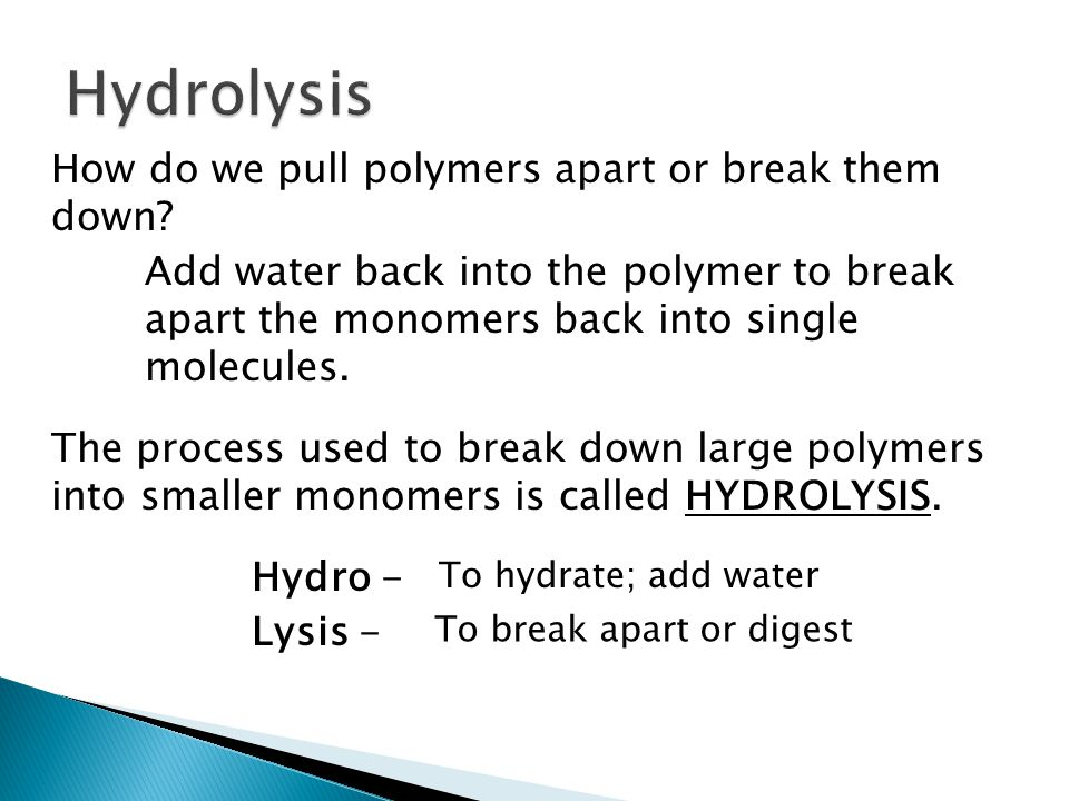 Hydrolysis How do we pull polymers apart or break them down