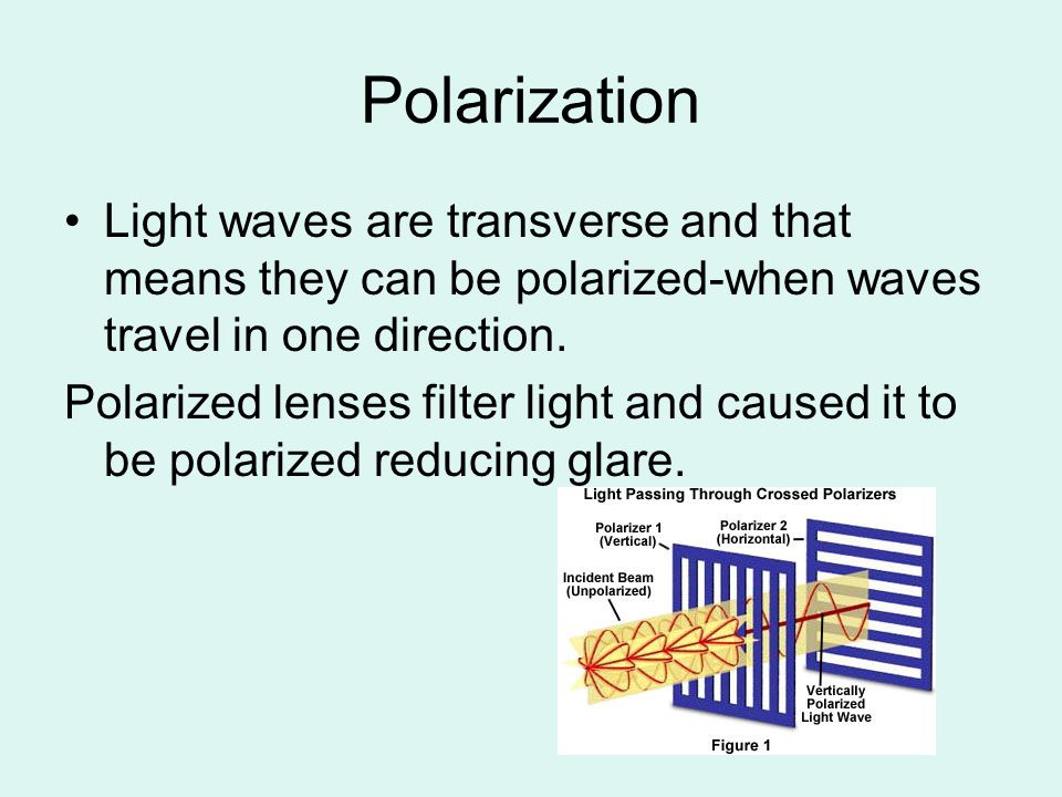 Polarization Light waves are transverse and that means they can be polarized-when waves travel in one direction.