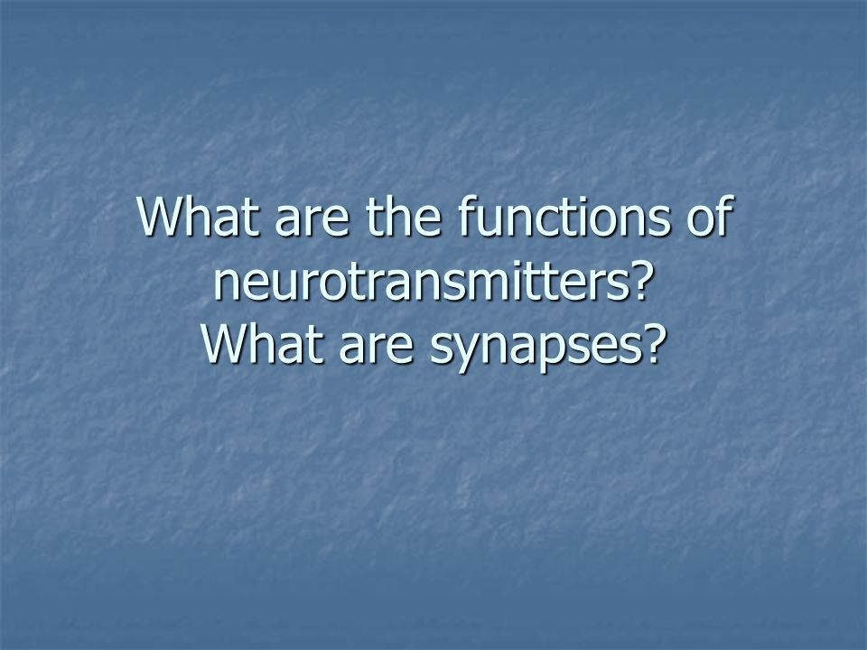 What are the functions of neurotransmitters What are synapses