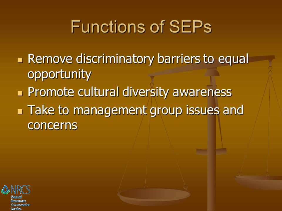 Functions of SEPs Remove discriminatory barriers to equal opportunity