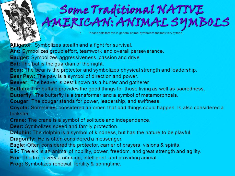 Native American Animal Symbolism Image Collections Meaning Of This