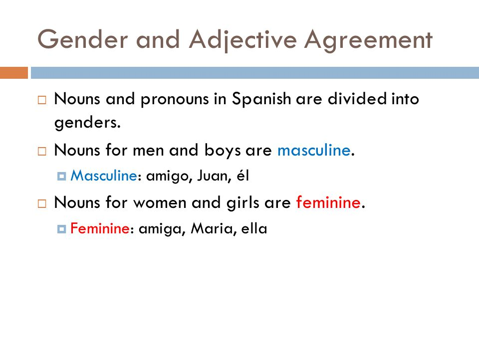 Gender And Adjective Agreement Ppt Download