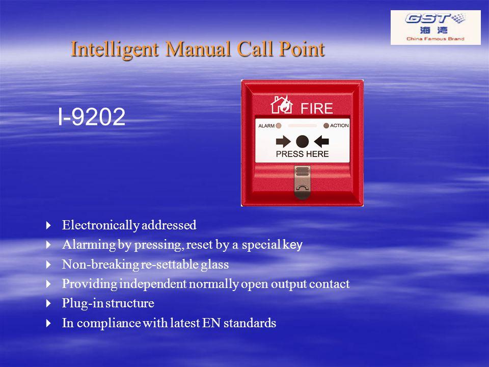 GST FIRE ALARM SYSTEM INTERNATIONAL BUSINESS DEPARTMENT