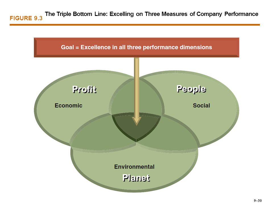 The Triple Bottom Line: Excelling on Three Measures of Company Performance