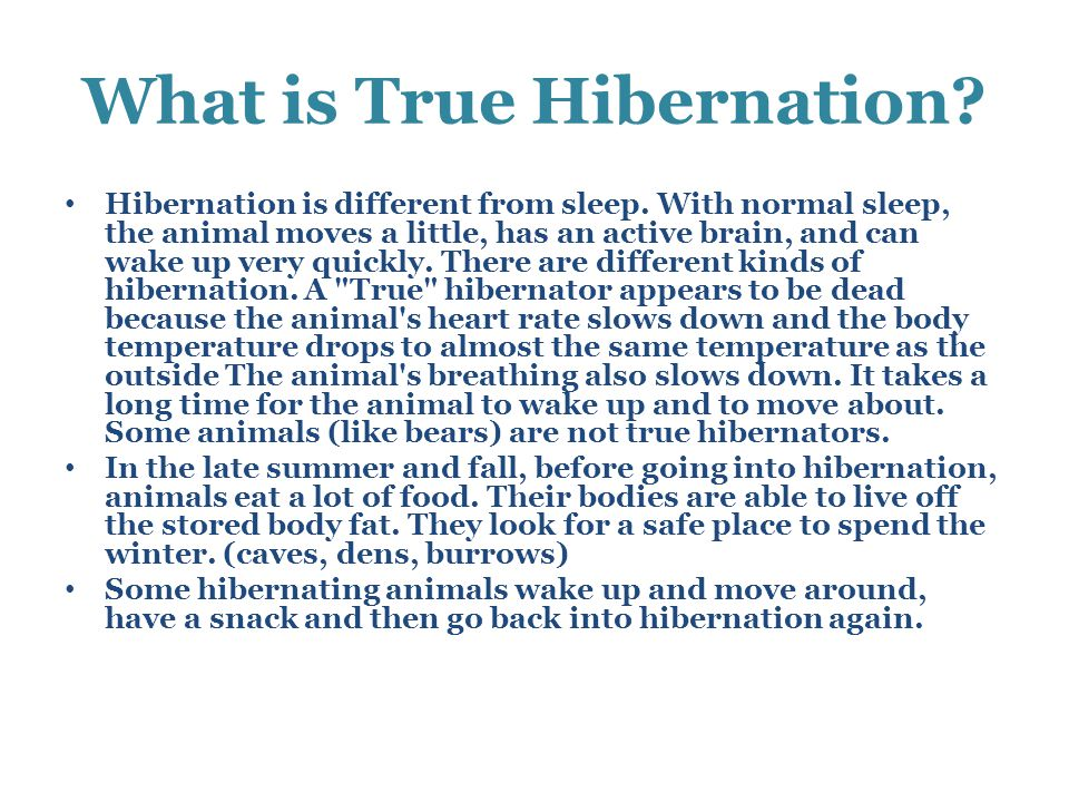 What is True Hibernation