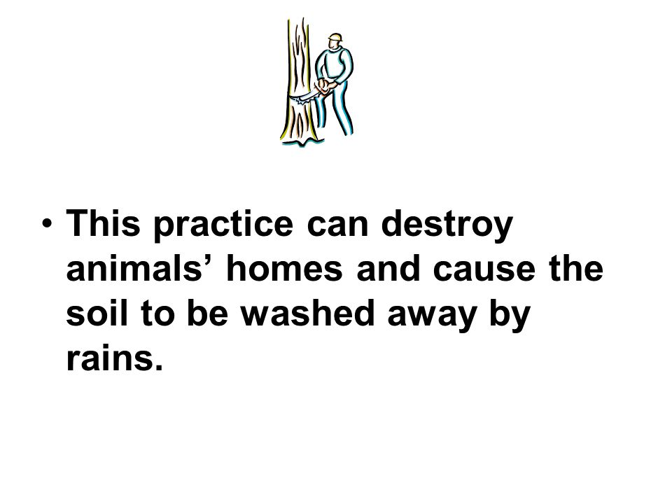 This practice can destroy animals' homes and cause the soil to be washed away by rains.