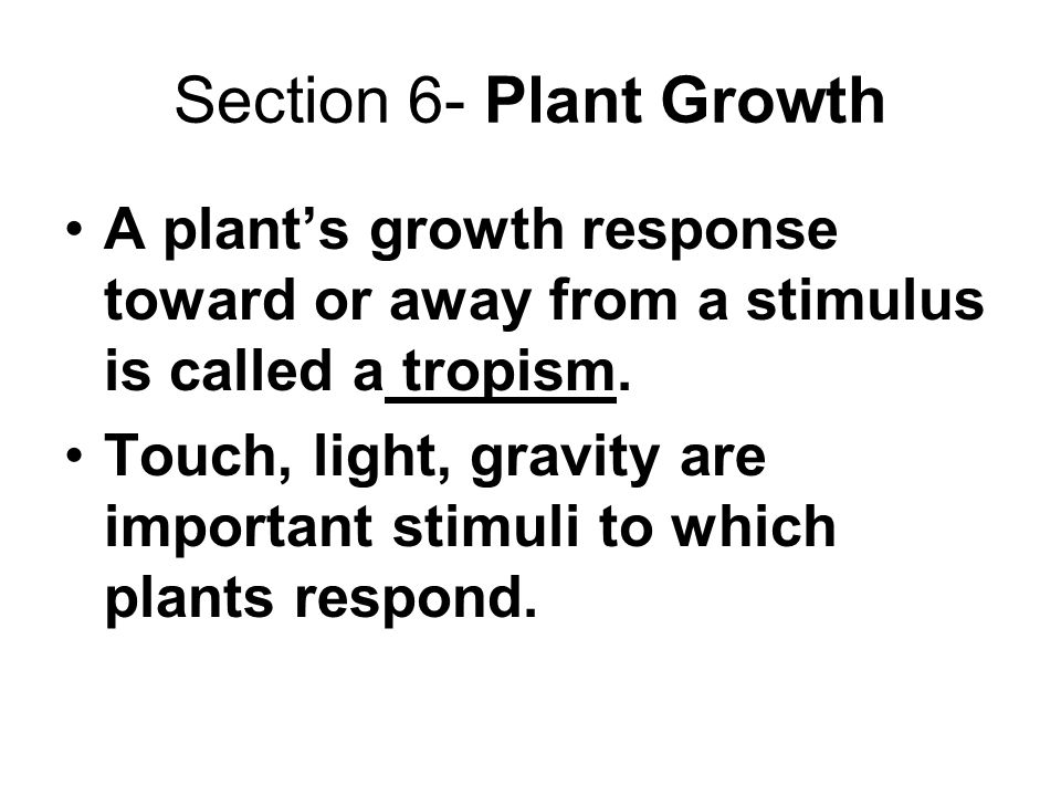 Section 6- Plant Growth A plant's growth response toward or away from a stimulus is called a tropism.