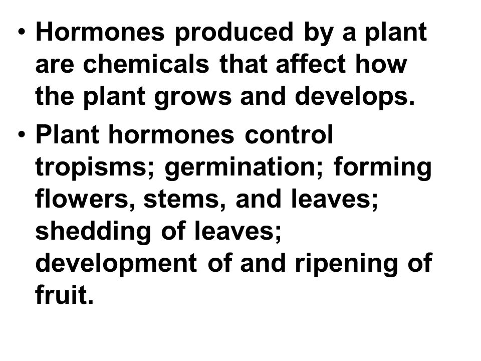 Hormones produced by a plant are chemicals that affect how the plant grows and develops.
