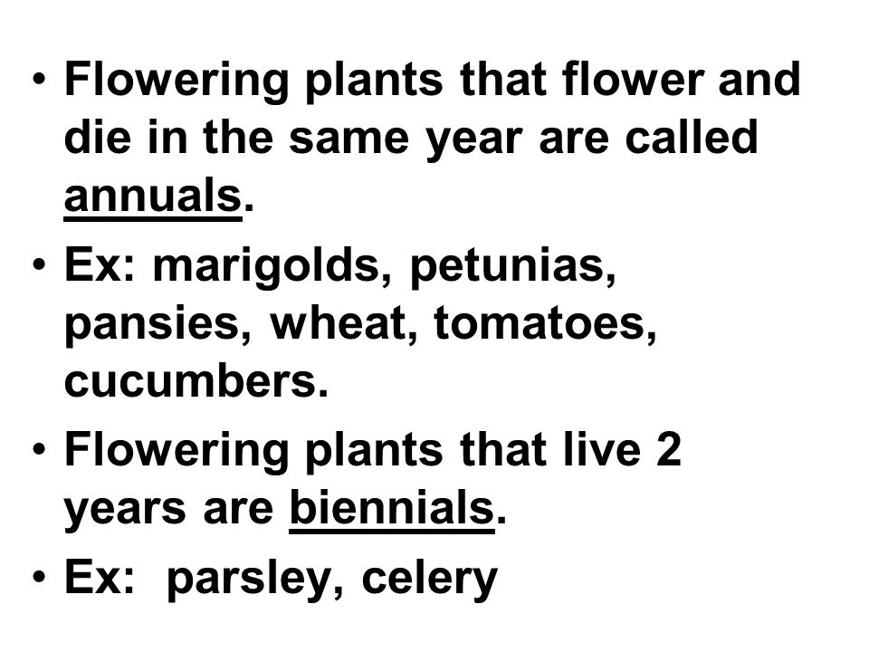 Flowering plants that flower and die in the same year are called annuals.