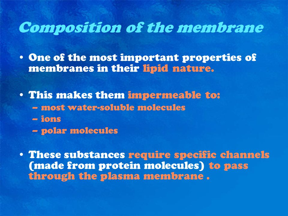 Composition of the membrane