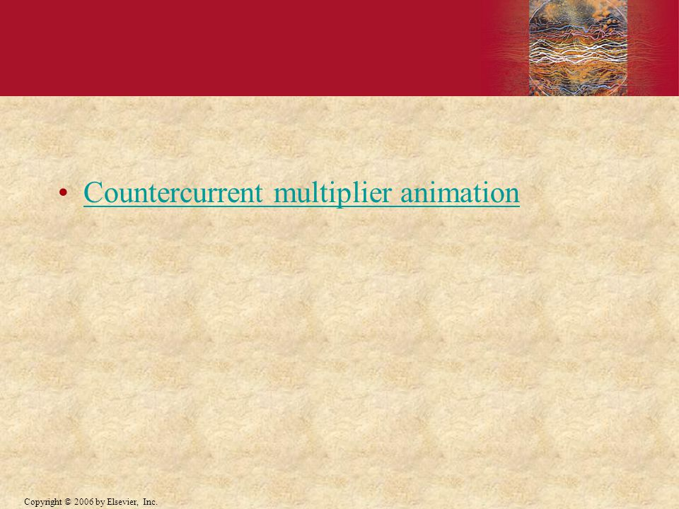 Countercurrent multiplier animation