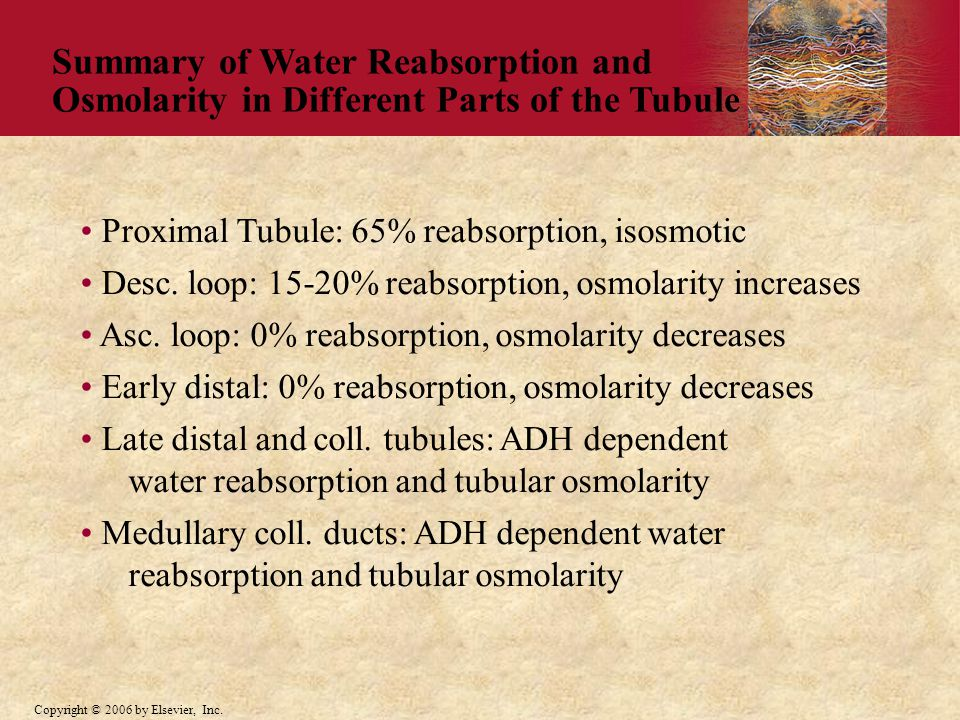 Summary of Water Reabsorption and Osmolarity in Different Parts of the Tubule