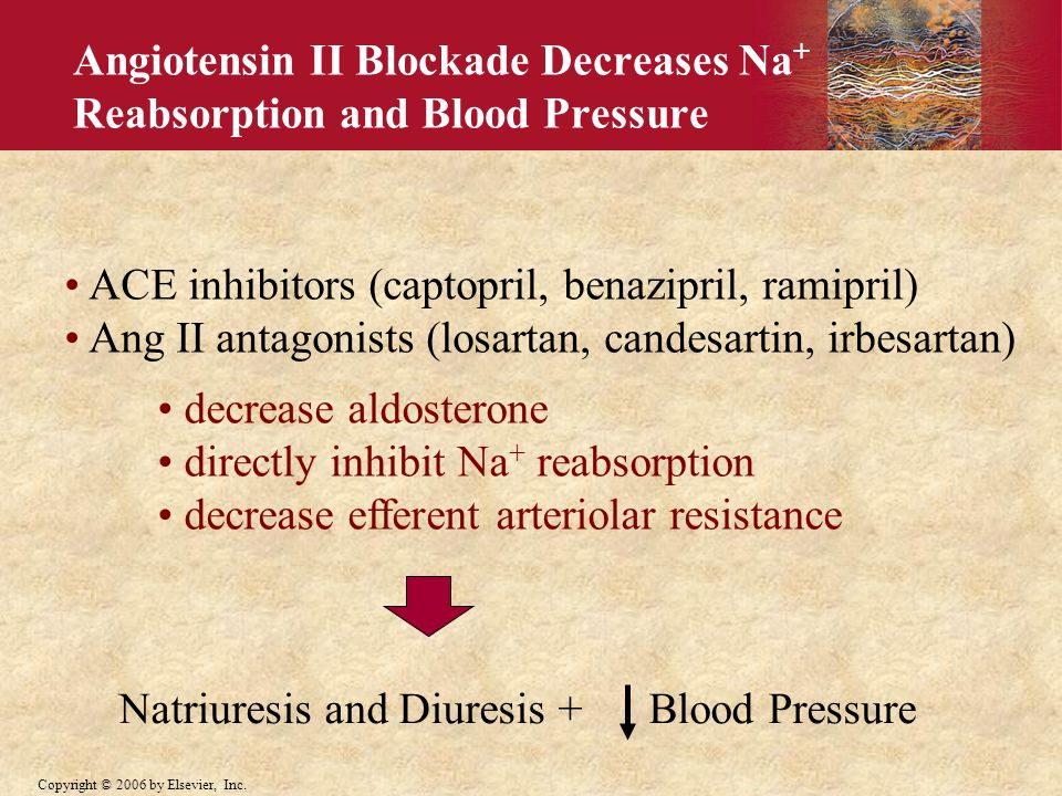 Angiotensin II Blockade Decreases Na+ Reabsorption and Blood Pressure