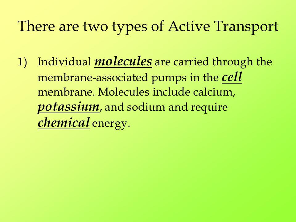 There are two types of Active Transport