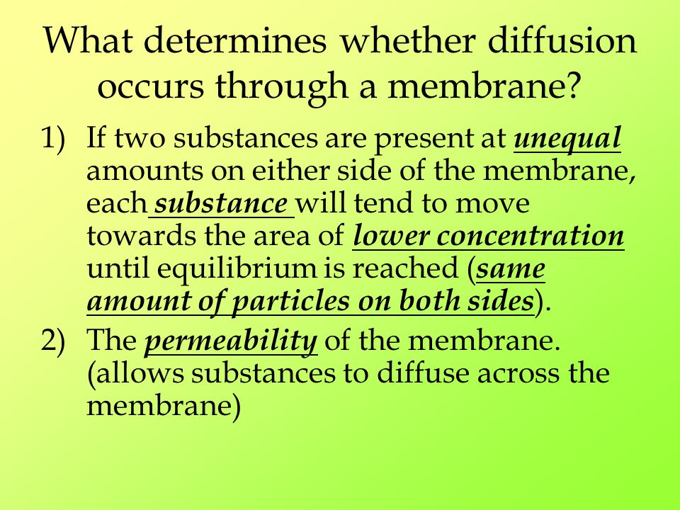What determines whether diffusion occurs through a membrane