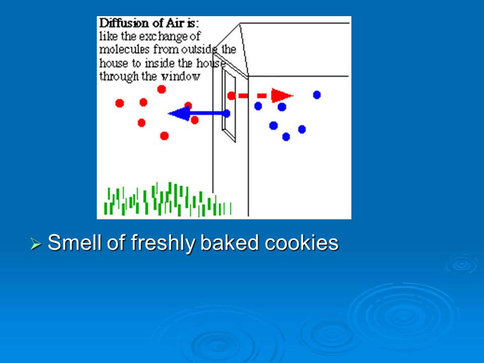 Smell of freshly baked cookies