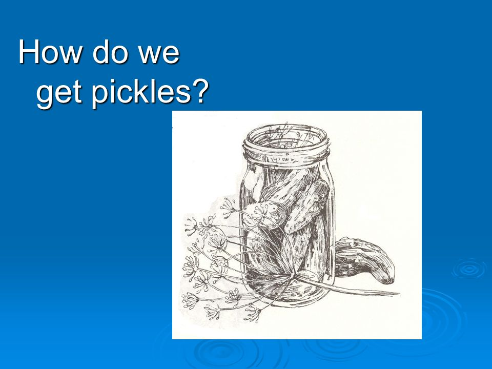 How do we get pickles