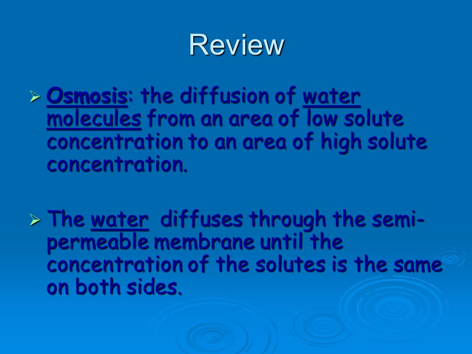 Review Osmosis: the diffusion of water molecules from an area of low solute concentration to an area of high solute concentration.