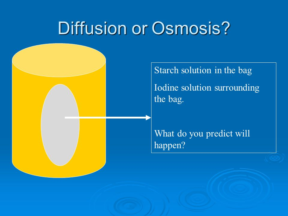 Diffusion or Osmosis Starch solution in the bag