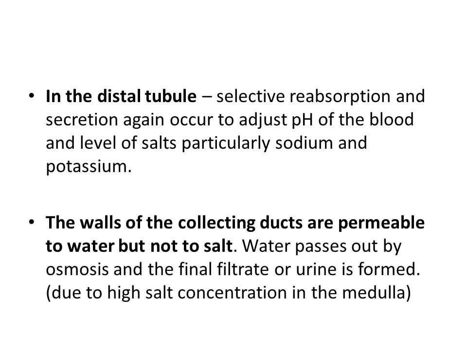 In the distal tubule – selective reabsorption and secretion again occur to adjust pH of the blood and level of salts particularly sodium and potassium.