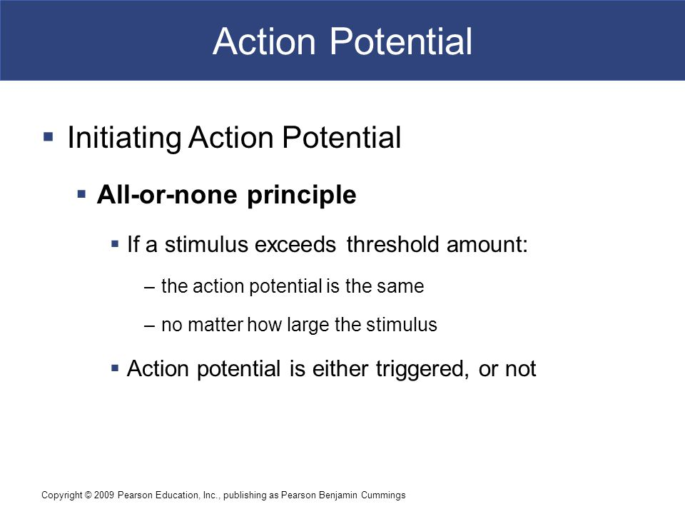 Action Potential Initiating Action Potential All-or-none principle