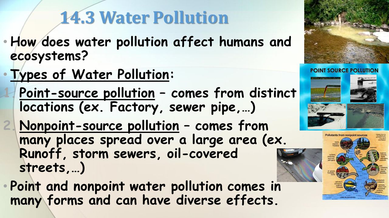 how does water pollution affect tourism
