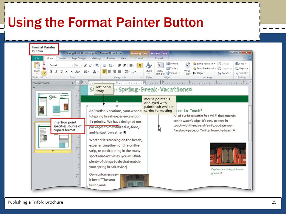 Using the Format Painter Button