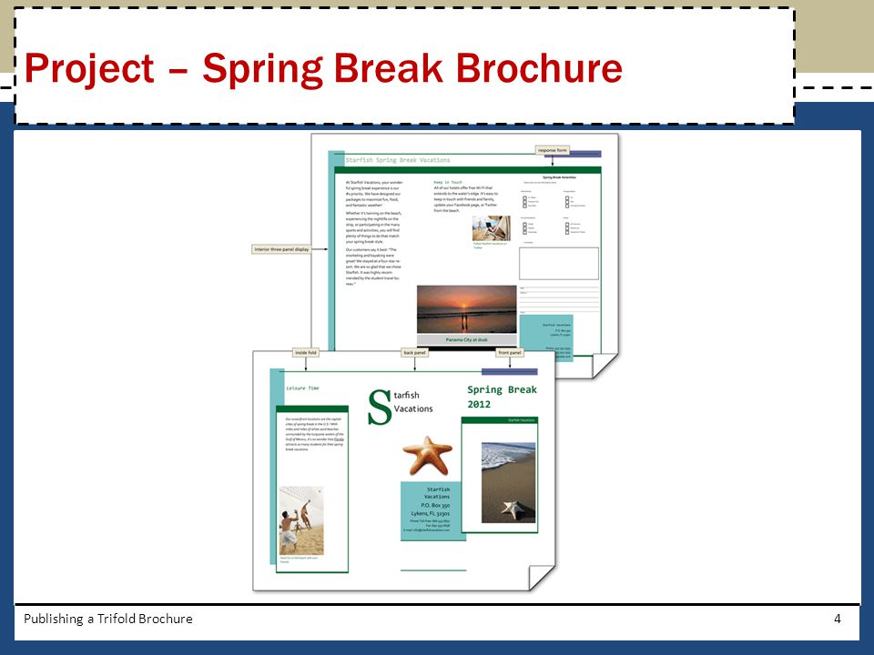 Project – Spring Break Brochure