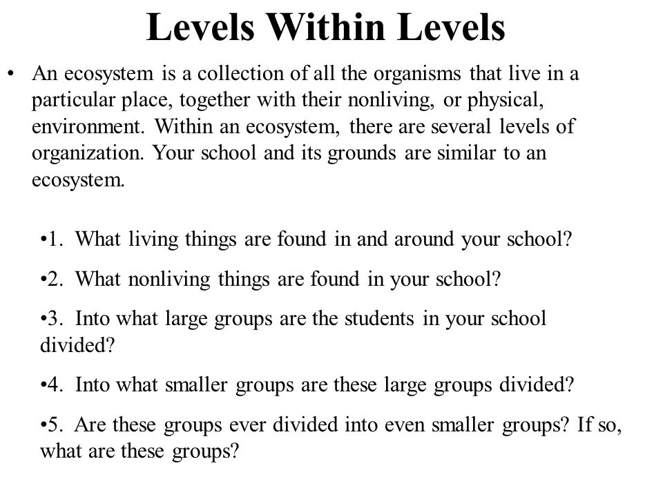 Levels Within Levels