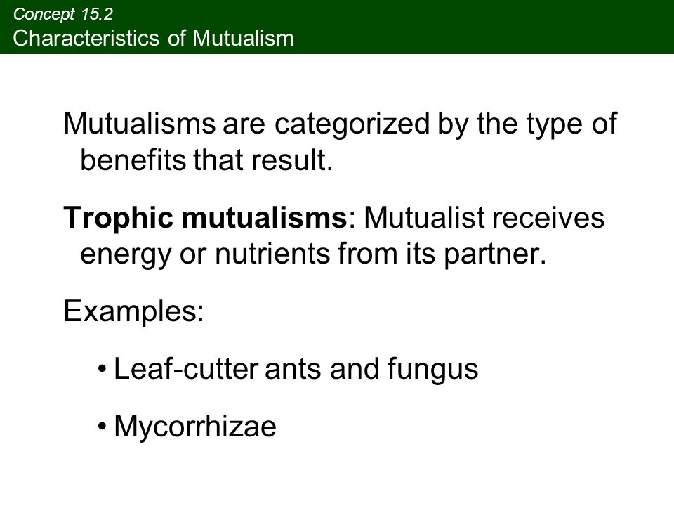 different types of mutualism