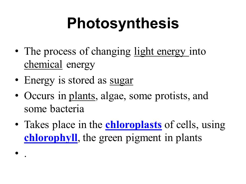 Photosynthesis The process of changing light energy into chemical energy. Energy is stored as sugar.