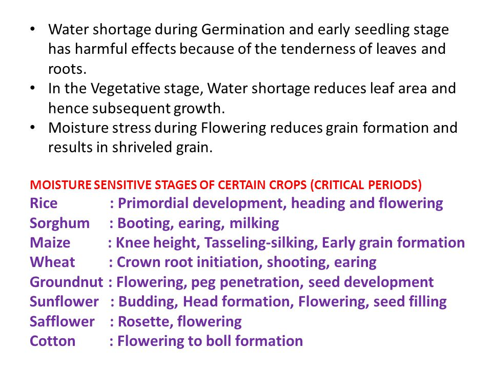 Crop water requirements - ppt video online download