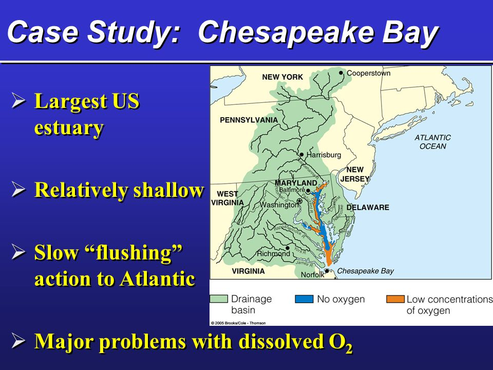 Case Study: Chesapeake Bay