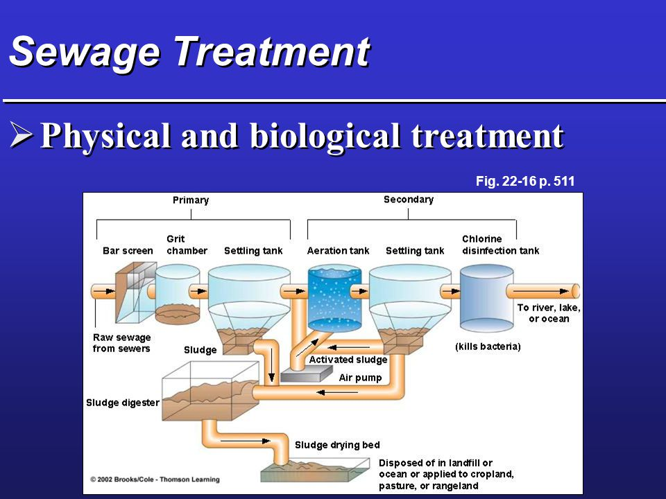 Sewage Treatment Physical and biological treatment Fig p. 511