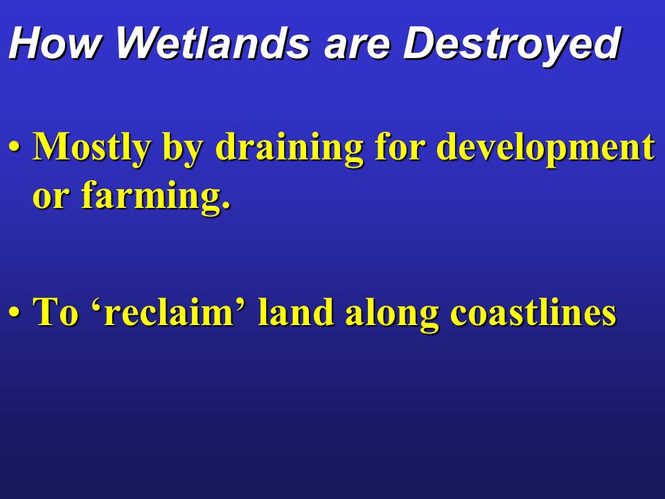 How Wetlands are Destroyed