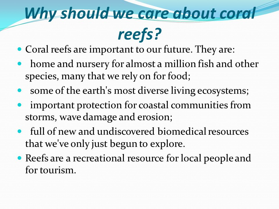 Why should we care about coral reefs