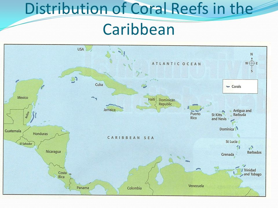 Distribution of Coral Reefs in the Caribbean