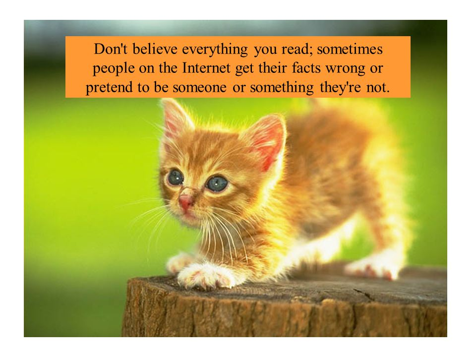 Don t believe everything you read; sometimes people on the Internet get their facts wrong or pretend to be someone or something they re not.