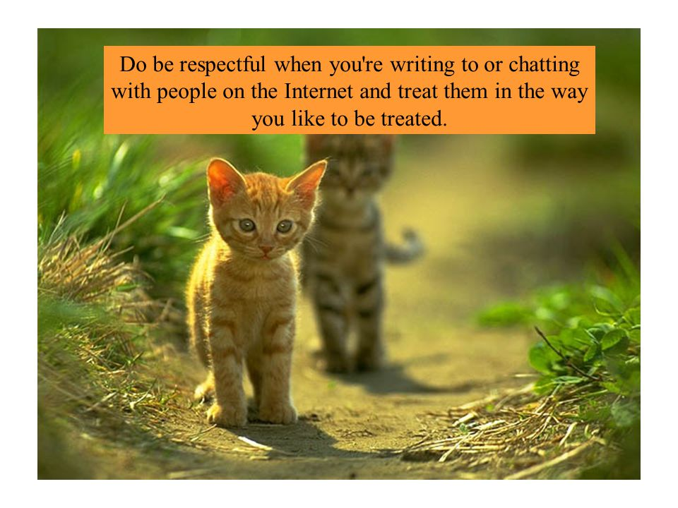 Do be respectful when you re writing to or chatting with people on the Internet and treat them in the way you like to be treated.