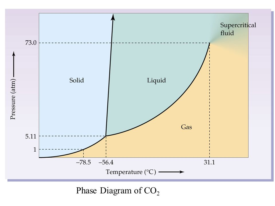 3 Phase Diagram Co2 Online Schematic Diagram