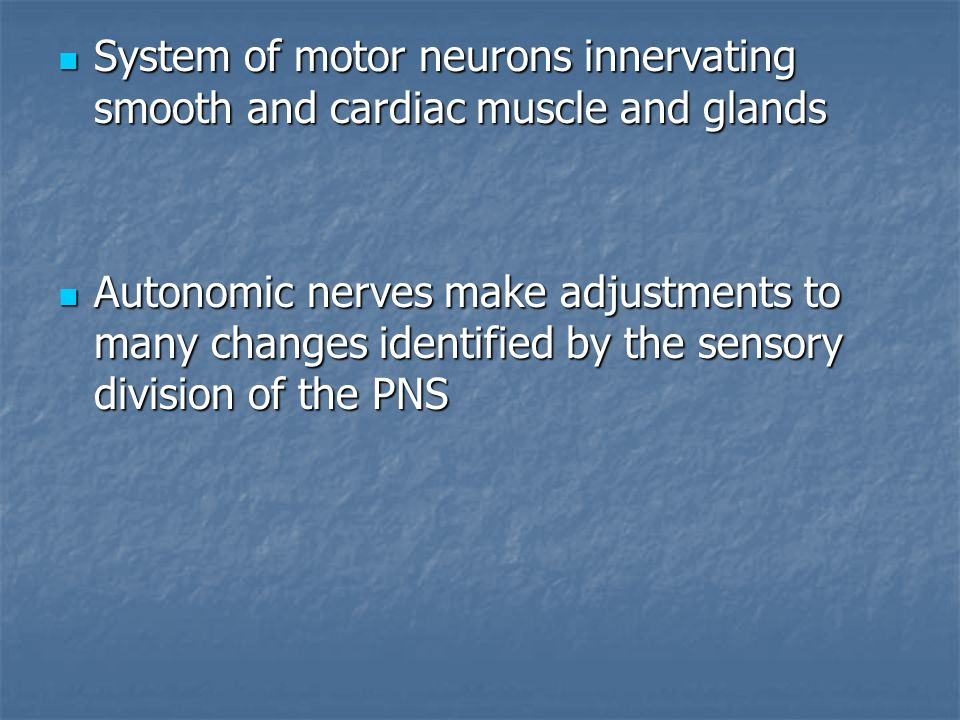Beste Anatomy And Physiology Chapter 14 Autonomic Nervous System ...